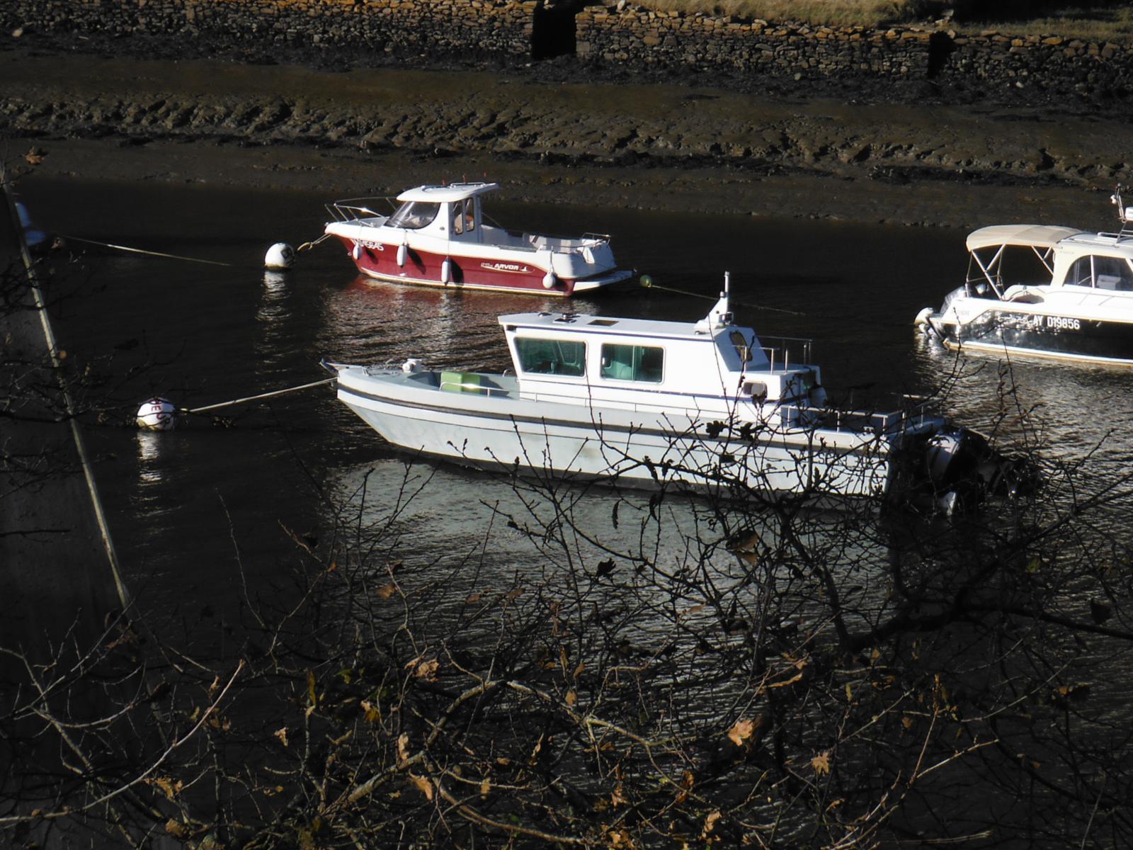 bateau à moteur Seanergie